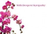 Packet of 6 large with deepest sympathy florist cards