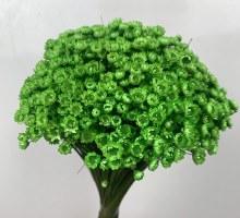 Dried Glixia Green 100g