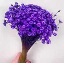 Dried Glixia Purple Aubergine 100g