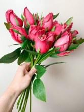 Rose bundle strong pink