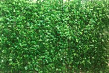 Greenery Flower Wall Panel 40cm x 60cm