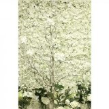 Artificial Flower Wall Cream 40cm x 60cm