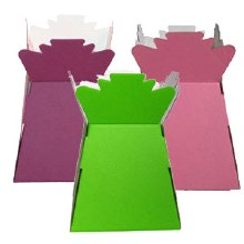 Box of 30 Mixed colours living vase, pale pink, hot pink, cream,black and lime green
