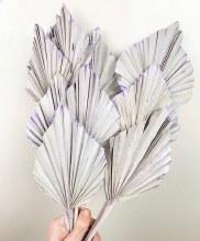 Dried Palmspear Stonewash Lavender
