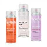 Blush Oasis Spray Paint 400ml
