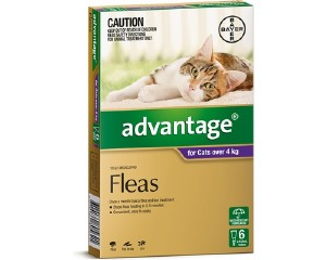 317004_ADVANTAGE_CAT4KG_PURP_6_S.jpg