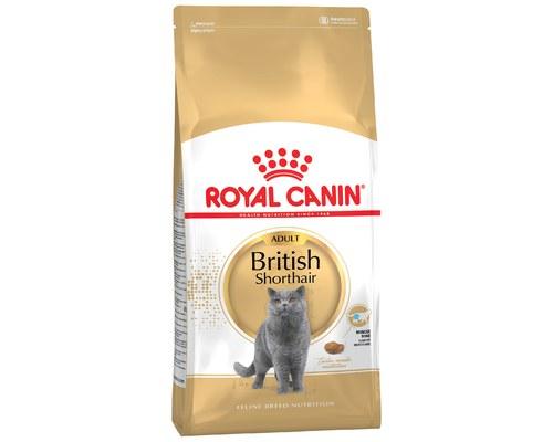 Royal Canin Cat British Shorthair 10kg My Pet Warehouse