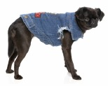 PETHAUS JUDAS POOCH BARK SABBATH DENIM JACKET SIZE 14