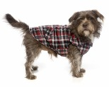 FUZZYARD DOG COAT - RED CHECKED FLANNO SIZE 4