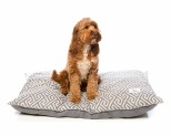 HARPER & HOUND GEOMETRIC PILLOW GREY MEDIUM-LARGE 100X80CM**