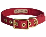 ANIMALS IN CHARGE RED + BRASS ALL WEATHER COLLAR: SMALL