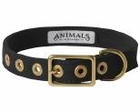 ANIMALS IN CHARGE BLACK COLLAR MEDIUM