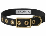 ANIMALS IN CHARGE BLACK COLLAR EXTRA LARGE
