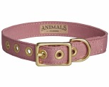 ANIMALS IN CHARGE DUSTY PINK + BRASS ALL WEATHER COLLAR: MEDIUM