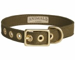 ANIMALS IN CHARGE OLIVE + BRASS ALL WEATHER COLLAR: SMALL