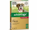 ADVANTAGE FOR LARGE DOGS 10-25KG 6 PACK (RED)