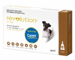 REVOLUTION FOR MEDIUM DOGS 5-10KG 6 PACK WITH CANEX WORMER (BROWN)
