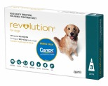REVOLUTION FOR VERY LARGE DOGS 20-40KG 3 PACK WITH CANEX WORMER (TEAL)