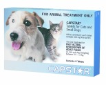 CAPSTAR FOR CATS OR SMALL DOGS 6 PACK (BLUE)