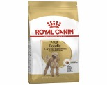 ROYAL CANIN POODLE DOG FOOD 1.5KG