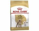 ROYAL CANIN POODLE ADULT DOG DRY FOOD 7.5 KG