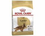 ROYAL CANIN COCKER SPANIEL DOG FOOD 3KG
