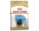 ROYAL CANIN ROTTWEILER BREED JUNIOR PUPPY DRY DOG FOOD 3KG