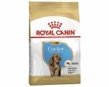 ROYAL CANIN COCKER SPANIEL BREED JUNIOR PUPPY DRY DOG FOOD 3KG
