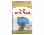 ROYAL CANIN POODLE BREED JUNIOR PUPPY DRY DOG FOOD 3KG