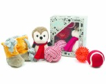 COMPANION GEAR COMFORT & JOY XMAS 5 PACK TOY GIFT SET