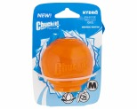 CHUCKIT HYDROFREEZE BALL MEDIUM*+
