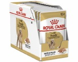 ROYAL CANIN POODLE WET FOOD 12 X 85G