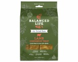 BALANCED LIFE LAMB DOG COMPANION TREATS 140G