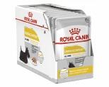 ROYAL CANIN DOG DERMACOMFORT LOAF 12X85G
