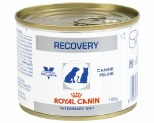 ROYAL CANIN VETERINARY DIET DOG RECOVERY 195G