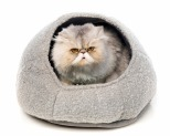 ALL FOR PAWS (AFP) CAT BED CATZILLA NEST GREY**