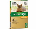 ADVANTAGE FOR SMALL CATS UNDER 4KG 6 PACK (ORANGE)