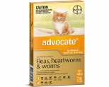 ADVOCATE FOR SMALL CATS UNDER 4KG 6 PACK (ORANGE)