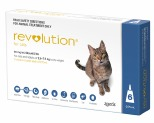 REVOLUTION FOR CATS 6 PACK (BLUE)