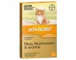 ADVOCATE FOR SMALL CATS UP TO 4KG 1 PACK (ORANGE)