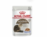ROYAL CANIN FELINE AGEING 12+ CAT FOOD IN JELLY 85G