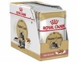 ROYAL CANIN FELINE MAINE COON POUCH 85G X 12
