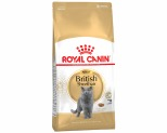 ROYAL CANIN FELINE BRITISH SHORTHAIR CAT FOOD 4KG