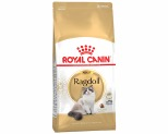 ROYAL CANIN FELINE RAGDOLL ADULT CAT FOOD 10KG