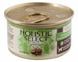 HOLISTIC SELECT CAT GRAIN FREE CHICKEN LIVER LAMB 85G