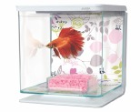 MARINA BETTA KIT FLORAL DESIGN 2 LITRES**
