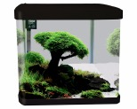AQUA ONE LIFESTYLE 29 GLASS AQUARIUM 29L BLACK~