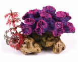 KAZOO CORAL WITH PLANT - SMALL