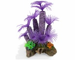 KAZOO PURPLE TUNICATE CORAL W/PLANTS - MEDIUM