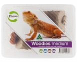 PISCES WOODIES - MEDIUM~